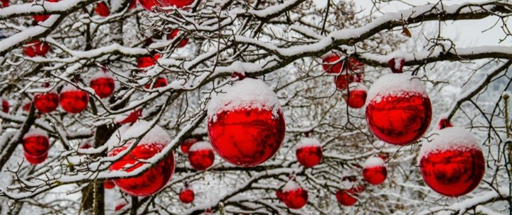 ball balls in snowy tree